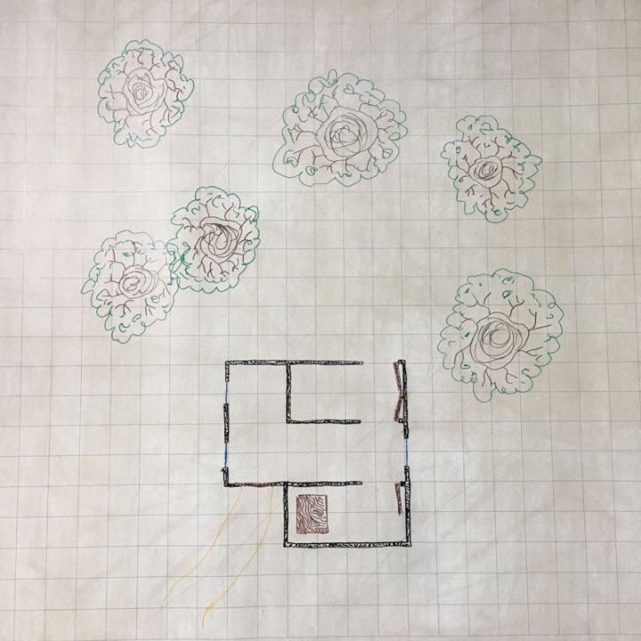 Mynoxad Fight Map