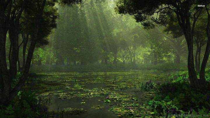 swamp finale