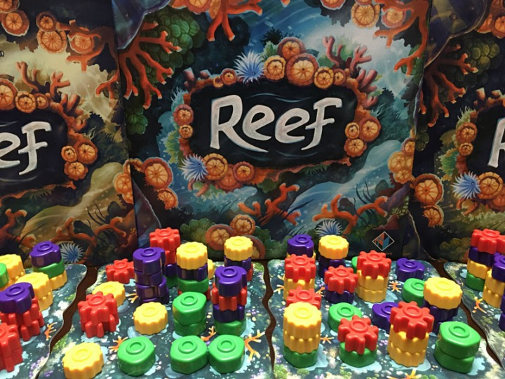 Reef Montage full