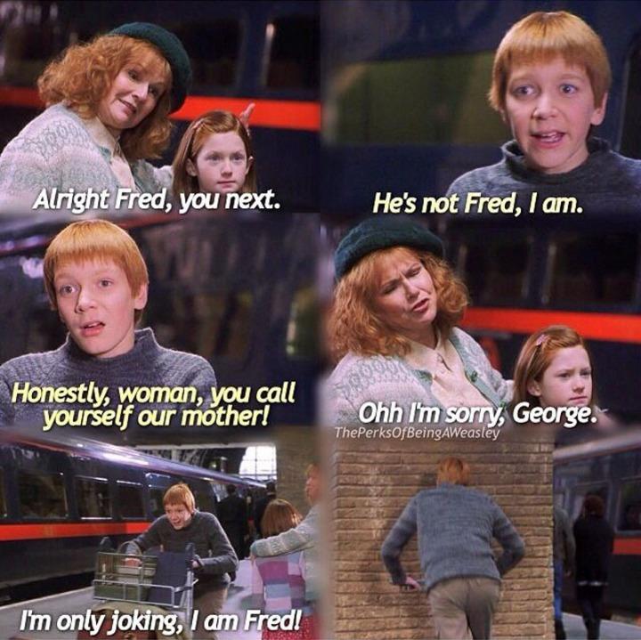 HP Weasley Twins
