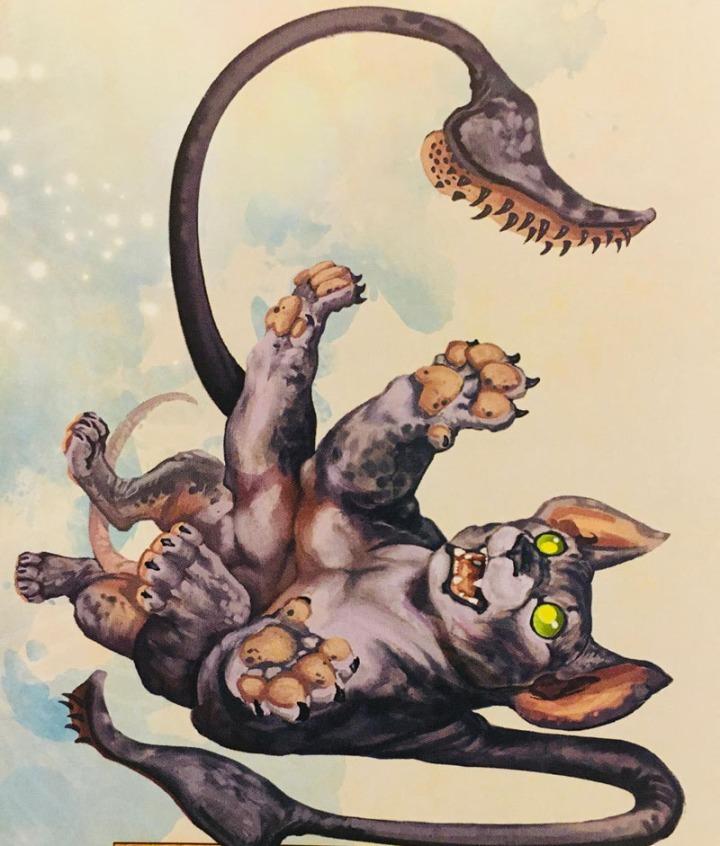 Displacer Kitten